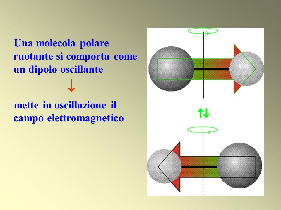  Una molecola polare ruotante si comporta come un dipolo oscillante