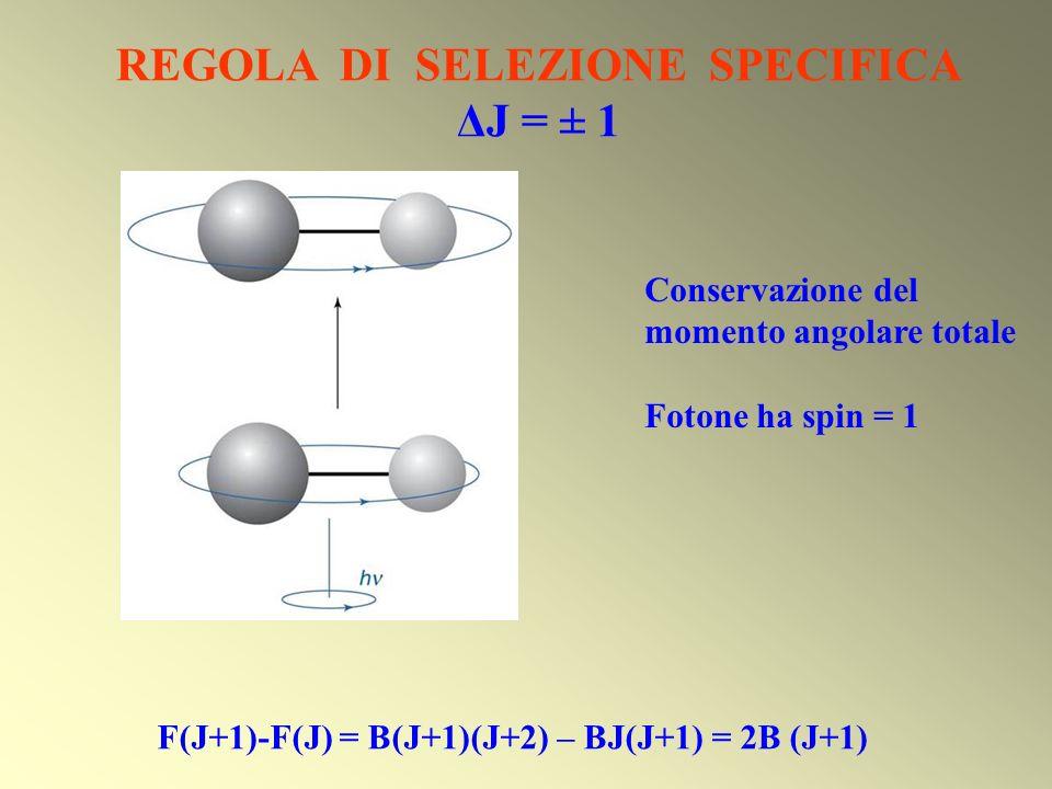 REGOLA DI SELEZIONE SPECIFICA ΔJ = ± 1