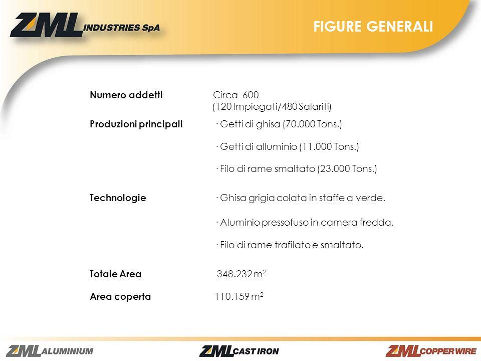 FIGURE GENERALI Numero addetti Circa 600 (120 Impiegati/480 Salariti)