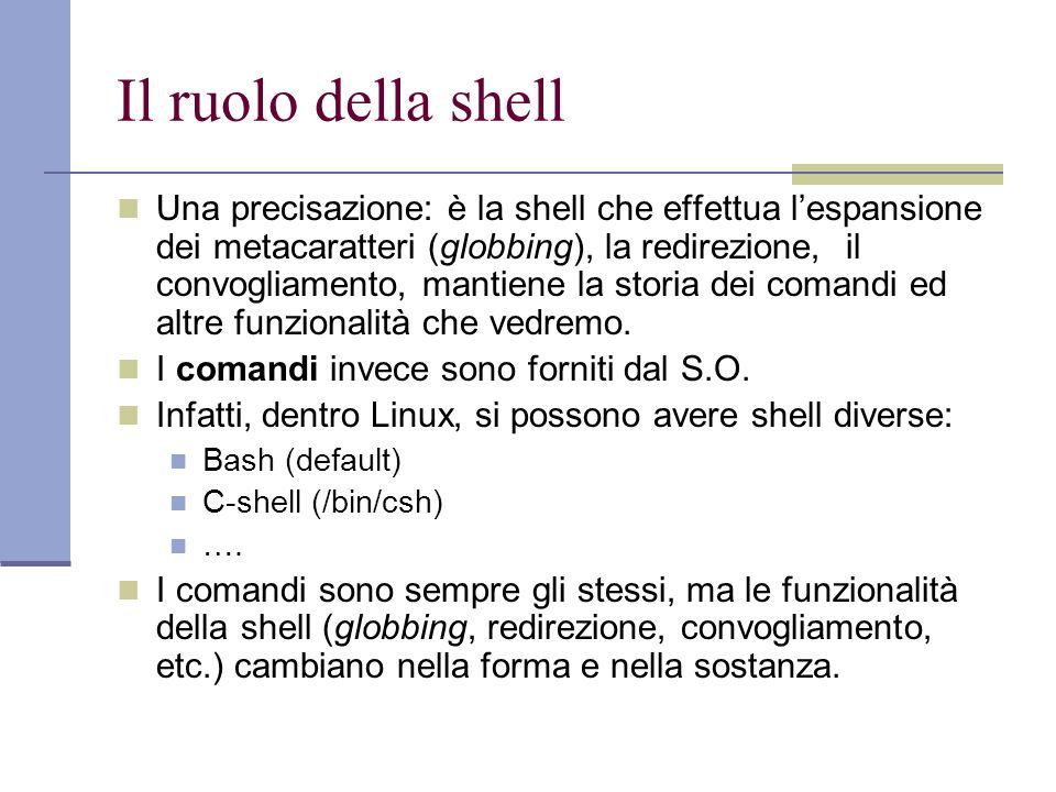 Il ruolo della shell
