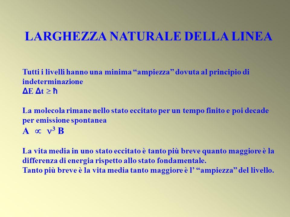 LARGHEZZA NATURALE DELLA LINEA