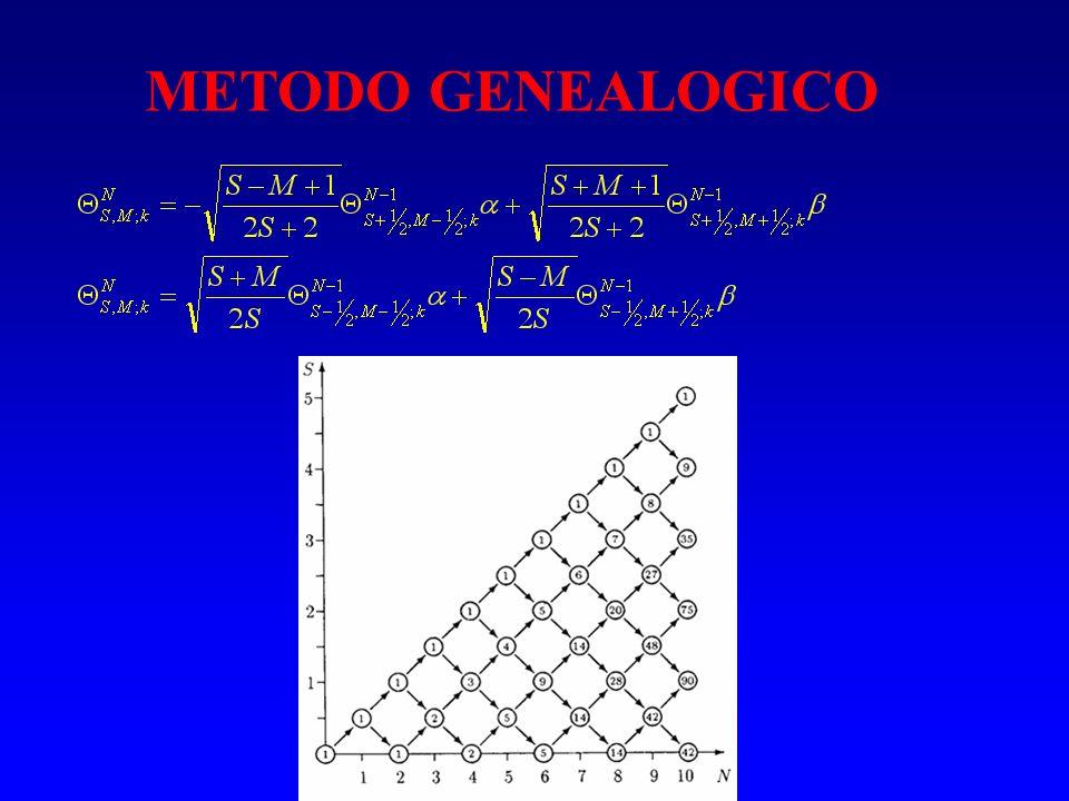 METODO GENEALOGICO