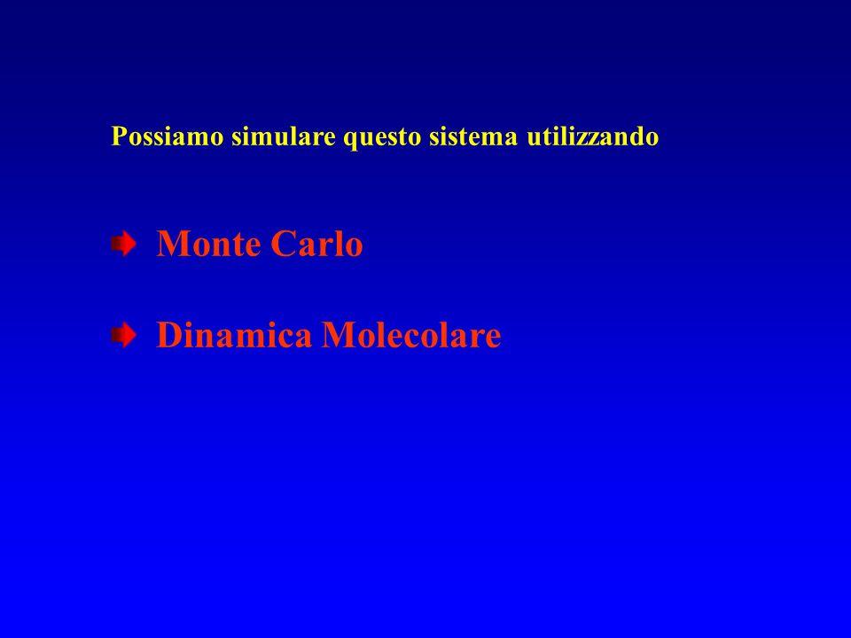Monte Carlo Dinamica Molecolare