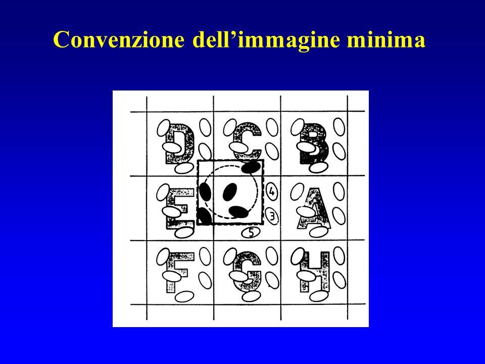Convenzione dell'immagine minima