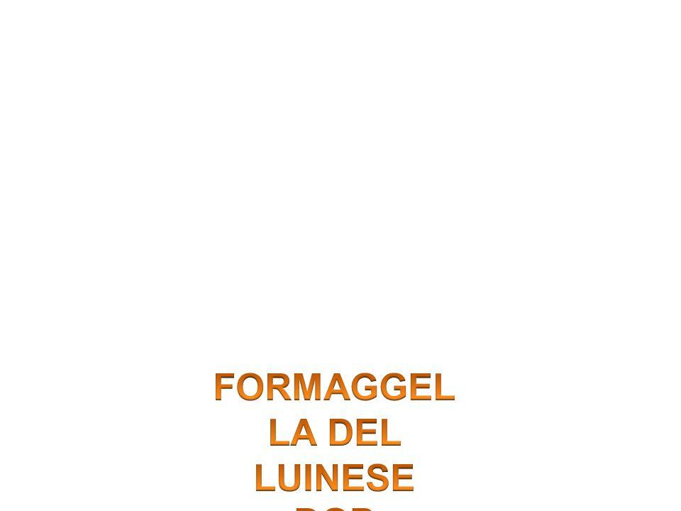 FORMAGGELLA DEL LUINESE DOP