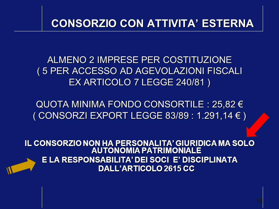 CONSORZIO CON ATTIVITA' ESTERNA