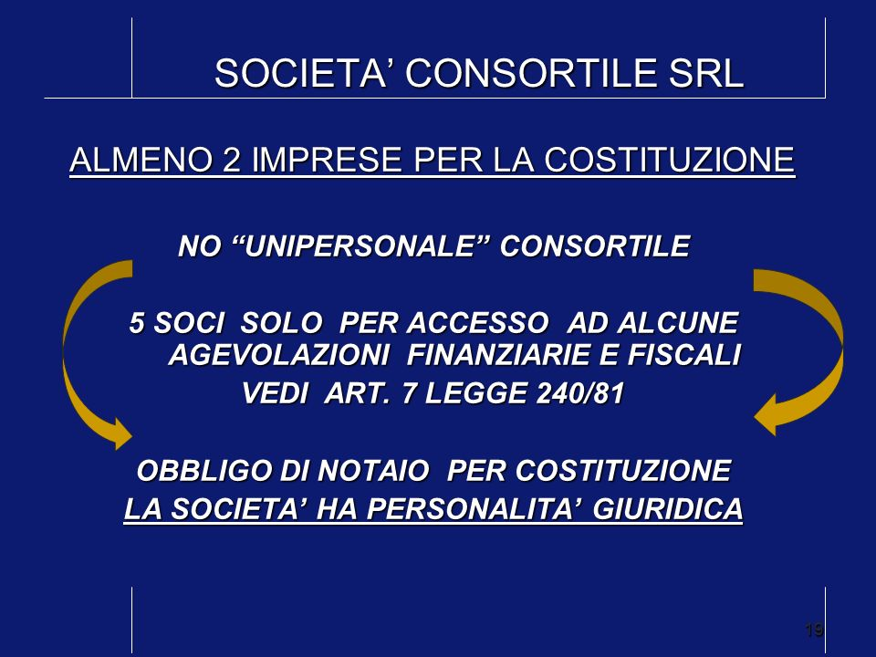 SOCIETA' CONSORTILE SRL