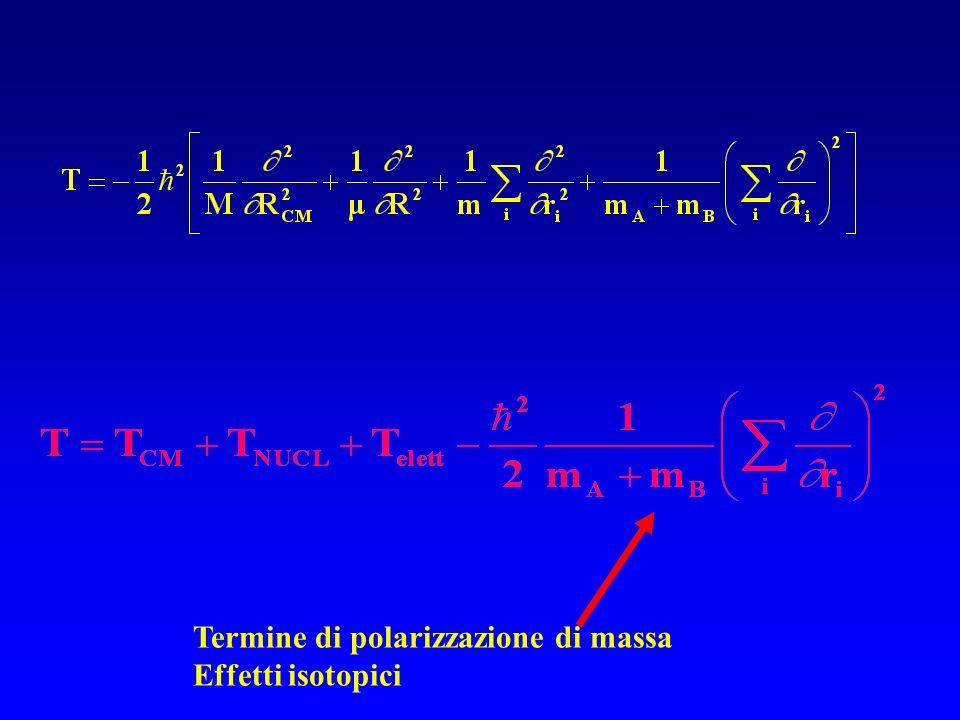Termine di polarizzazione di massa