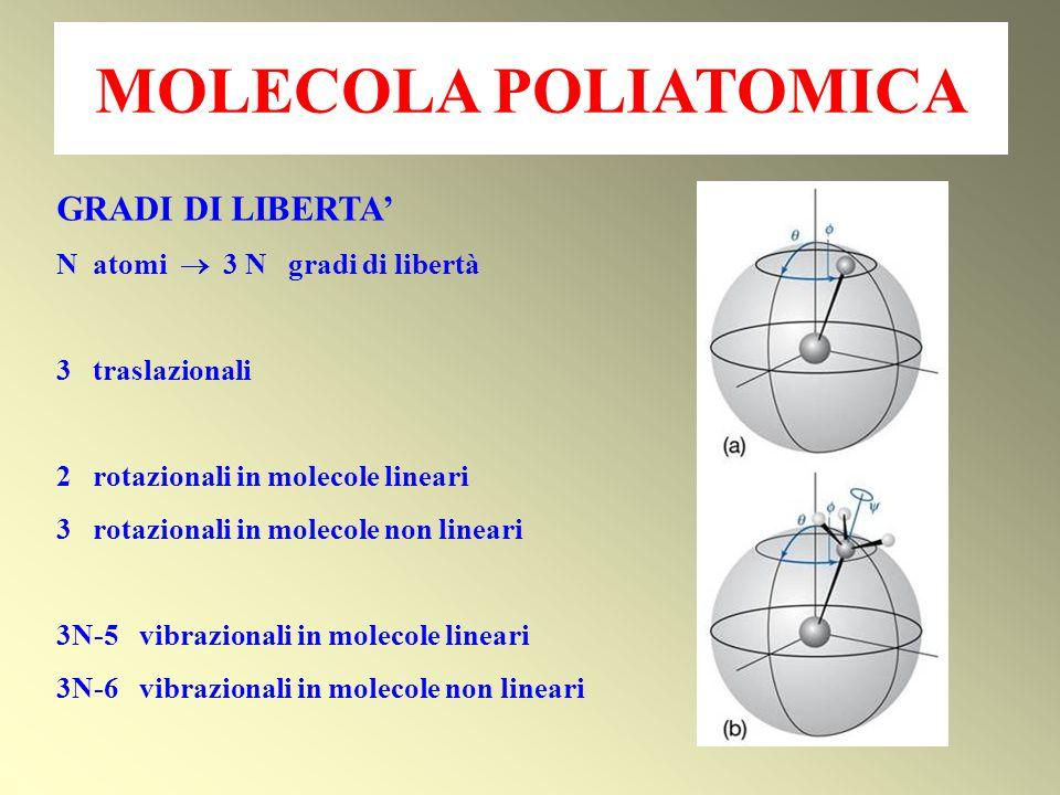 MOLECOLA POLIATOMICA GRADI DI LIBERTA' N atomi  3 N gradi di libertà