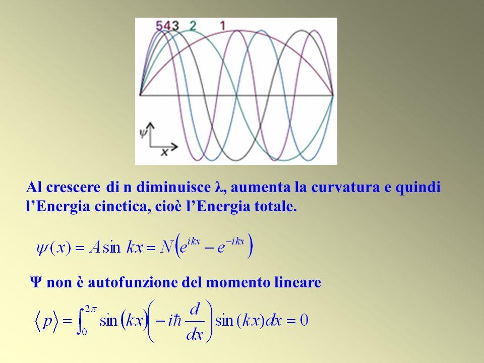 Al crescere di n diminuisce λ, aumenta la curvatura e quindi l'Energia cinetica, cioè l'Energia totale.