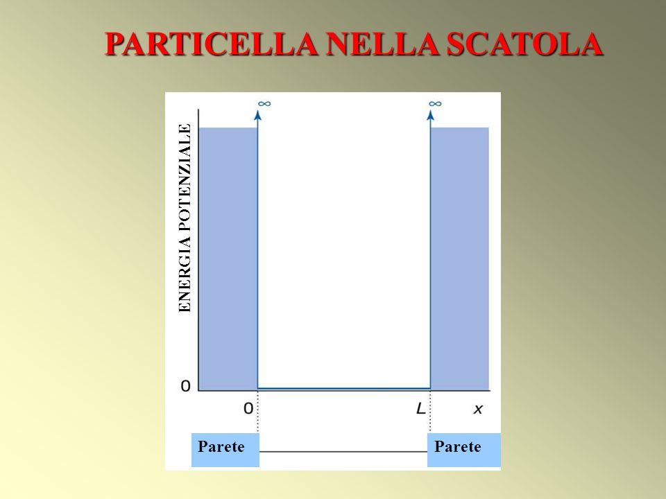 PARTICELLA NELLA SCATOLA