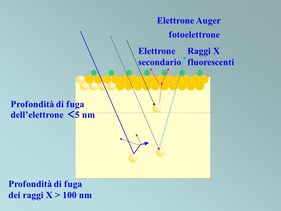 Elettrone Auger fotoelettrone. Elettrone. secondario. Raggi X. fluorescenti. Profondità di fuga.