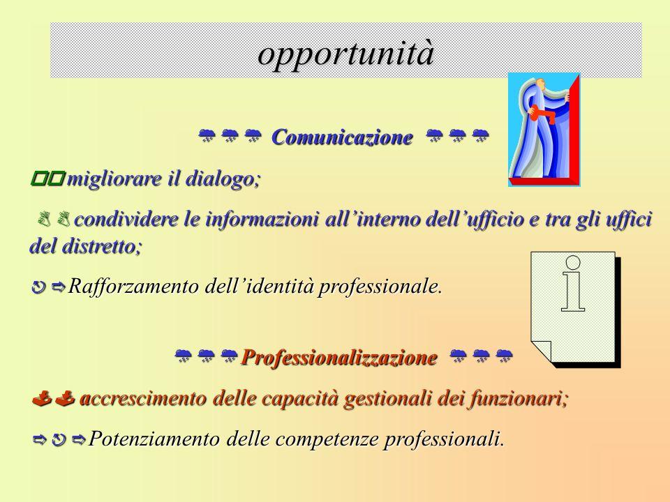  Professionalizzazione 