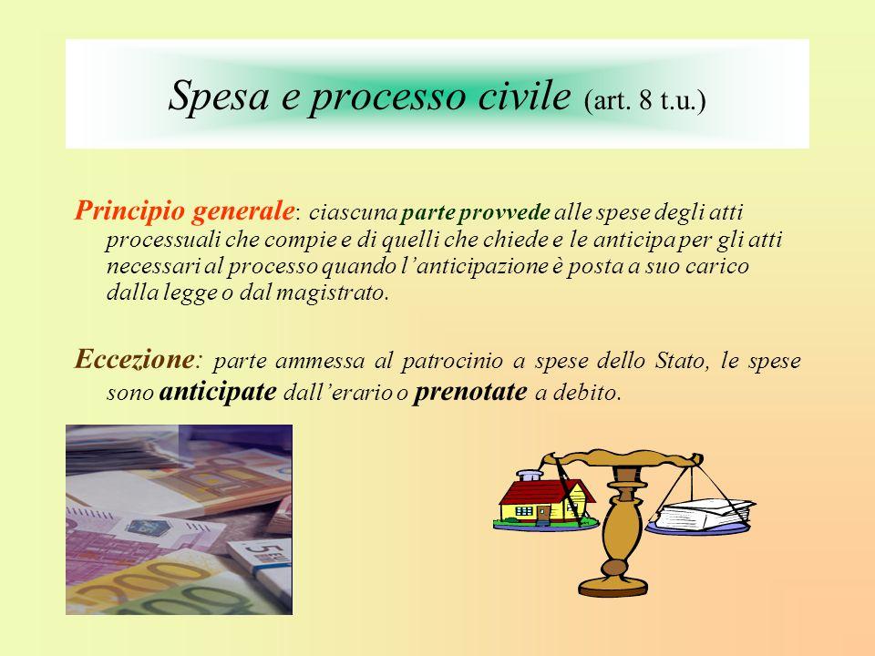 Spesa e processo civile (art. 8 t.u.)