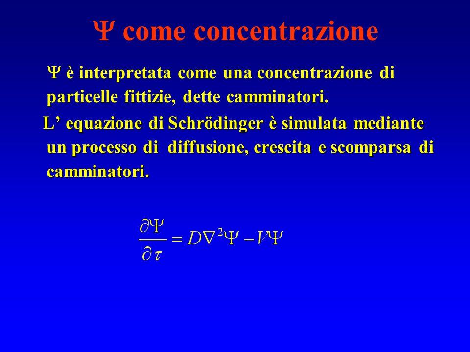 come concentrazione  è interpretata come una concentrazione di particelle fittizie, dette camminatori.