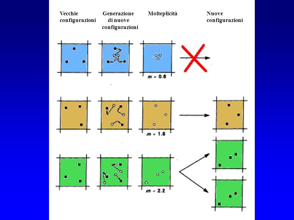 The DMC algorithm Vecchie Generazione Molteplicità Nuove