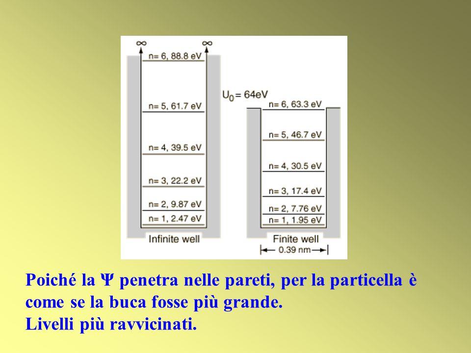 Poiché la Ψ penetra nelle pareti, per la particella è come se la buca fosse più grande.
