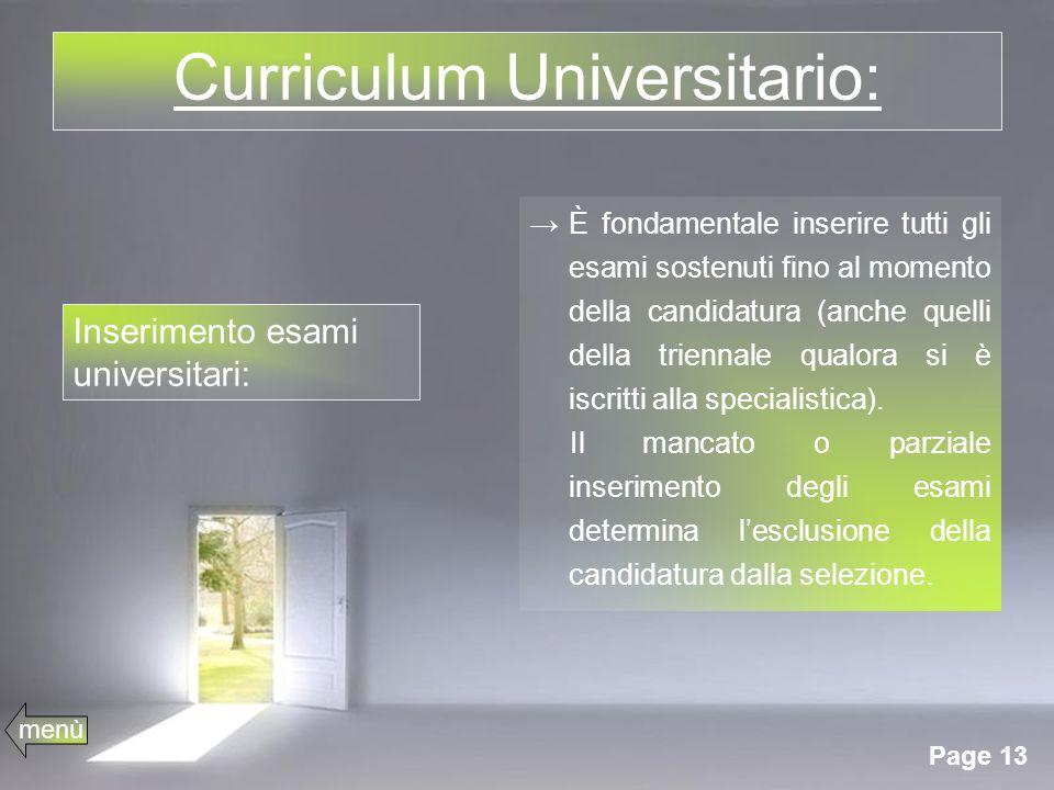 Curriculum Universitario:
