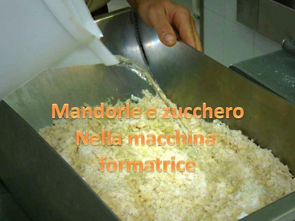 Mandorle e zucchero Nella macchina formatrice