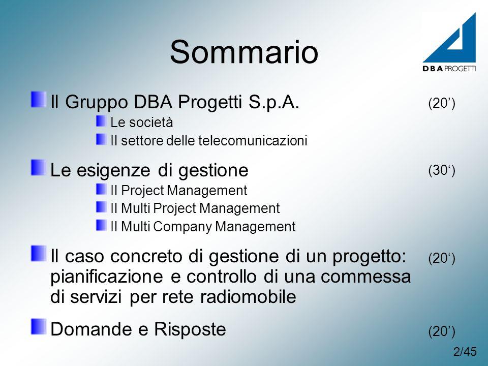Sommario Il Gruppo DBA Progetti S.p.A. Le esigenze di gestione