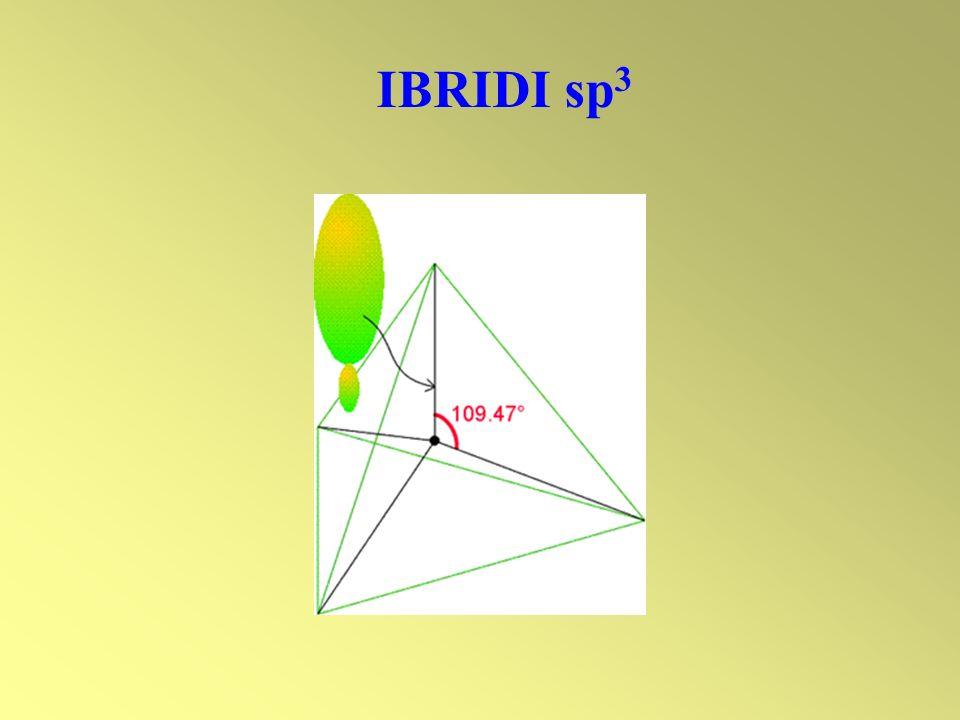 IBRIDI sp3