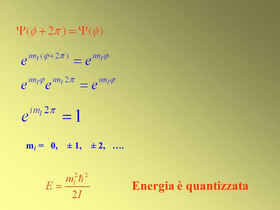 ml = 0, ± 1, ± 2, …. Energia è quantizzata
