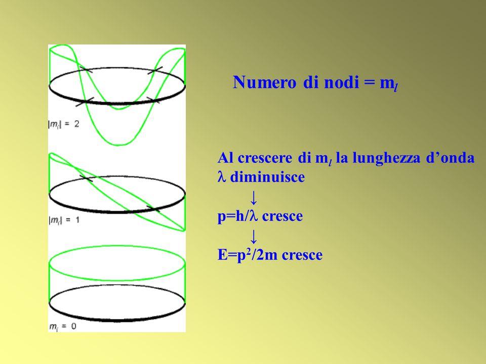 Numero di nodi = ml Al crescere di ml la lunghezza d'onda  diminuisce
