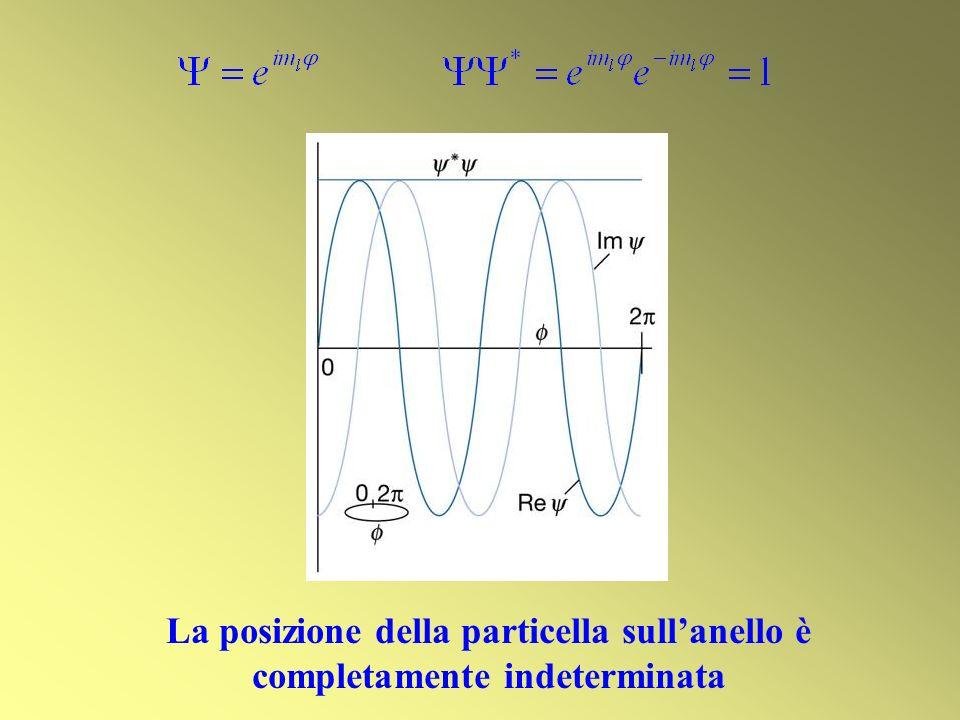 La posizione della particella sull'anello è completamente indeterminata