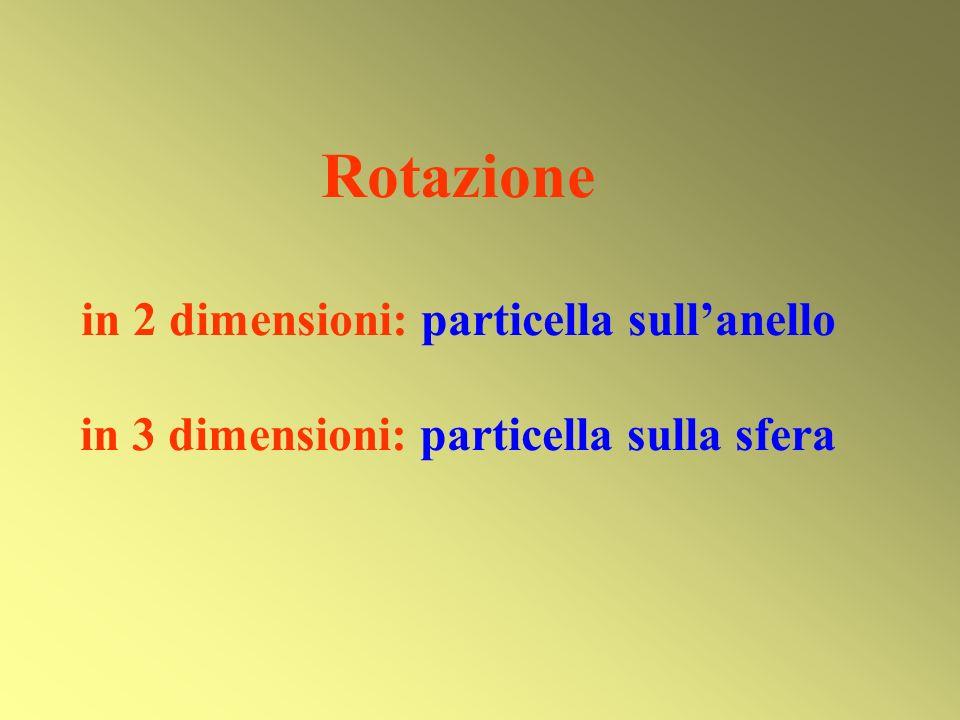 Rotazione in 2 dimensioni: particella sull'anello