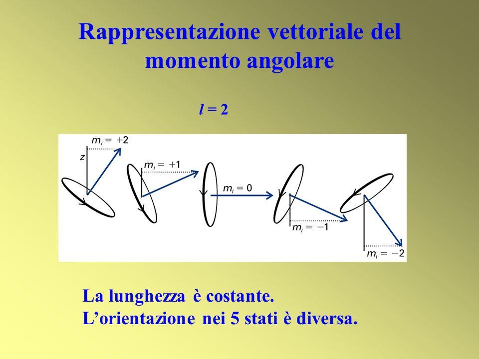 Rappresentazione vettoriale del momento angolare