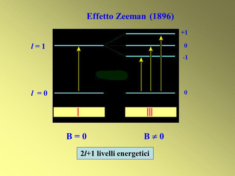 Effetto Zeeman (1896) B = 0 B  0 l = 1 l = 0 2l+1 livelli energetici