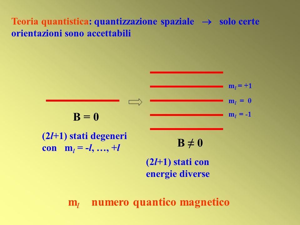 ml numero quantico magnetico