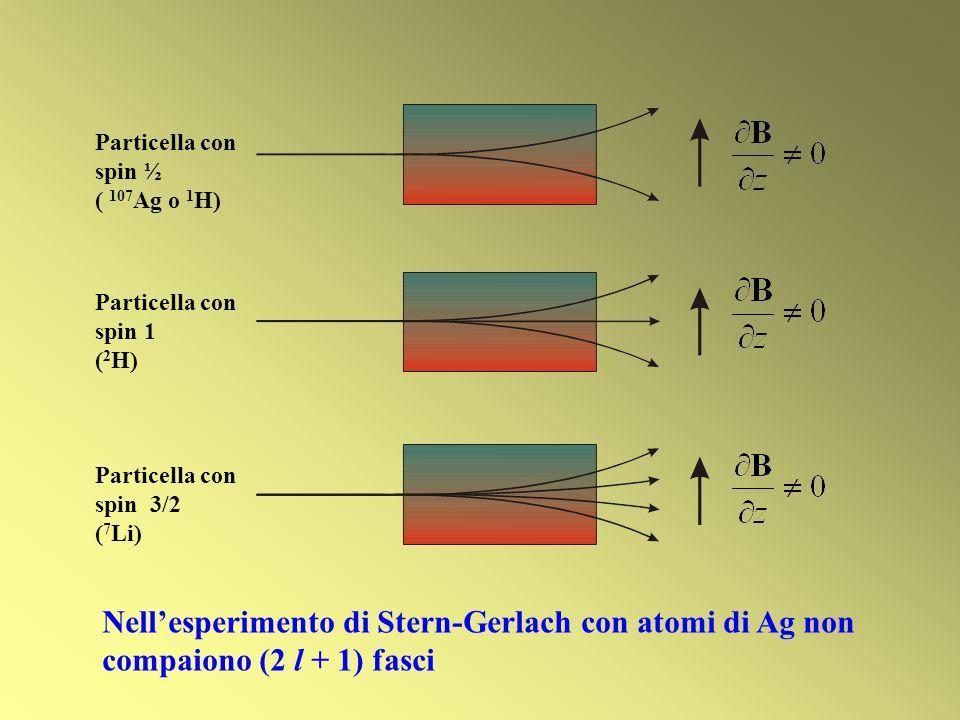 Particella con spin ½ ( 107Ag o 1H) Particella con spin 1. (2H) Particella con. spin 3/2. (7Li)