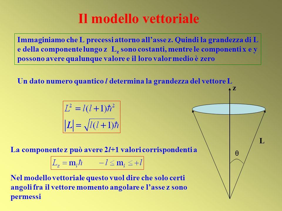 Il modello vettoriale