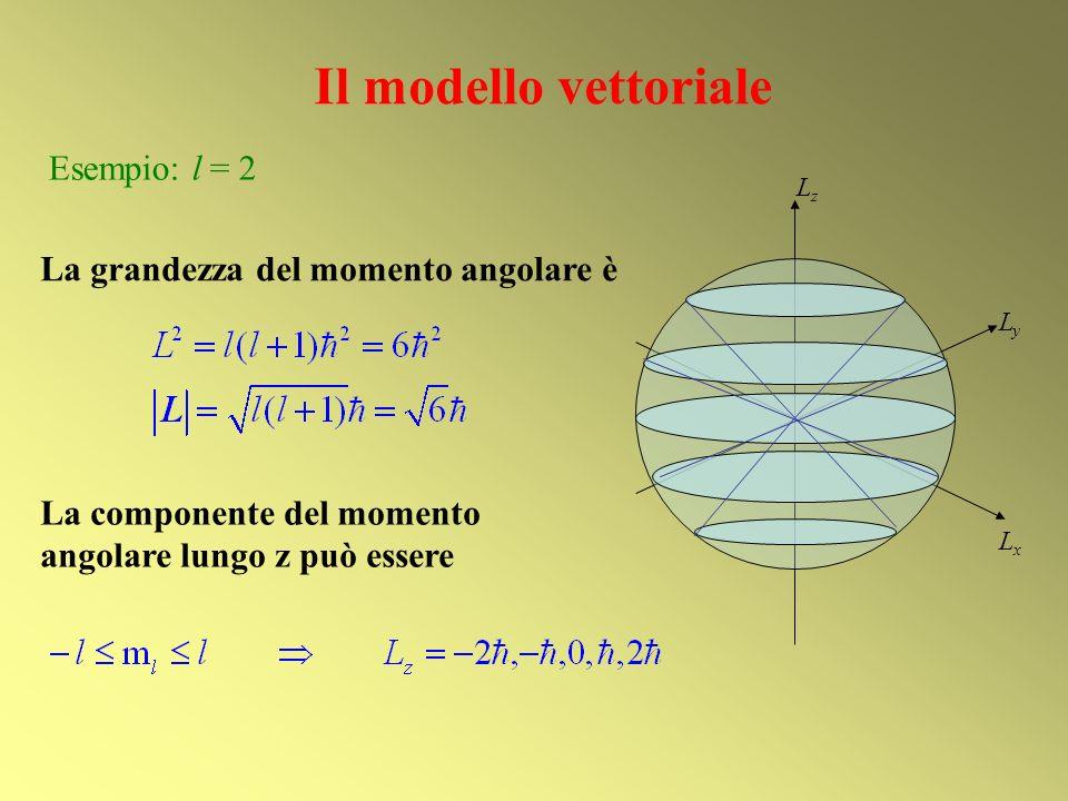 Il modello vettoriale Esempio: l = 2