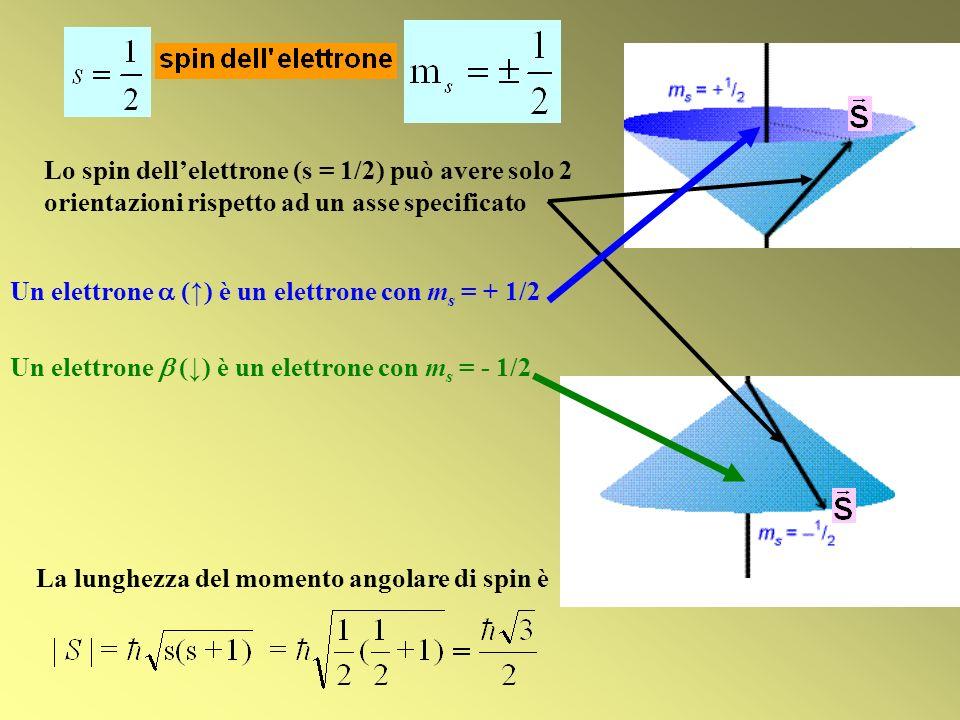 Lo spin dell'elettrone (s = 1/2) può avere solo 2