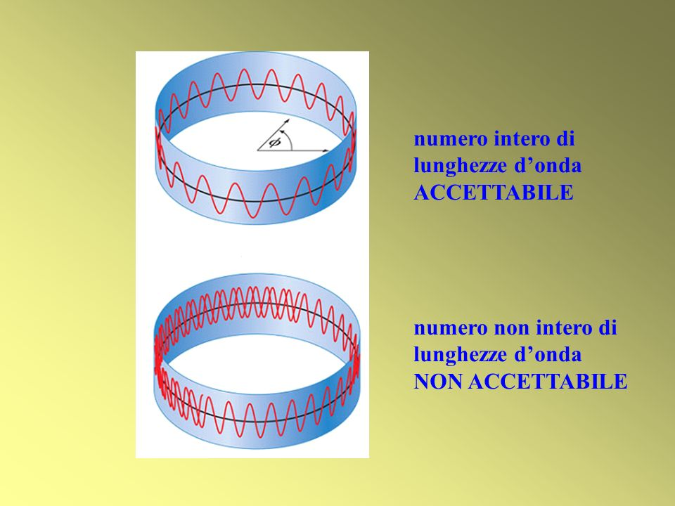 numero intero di lunghezze d'onda ACCETTABILE numero non intero di lunghezze d'onda NON ACCETTABILE