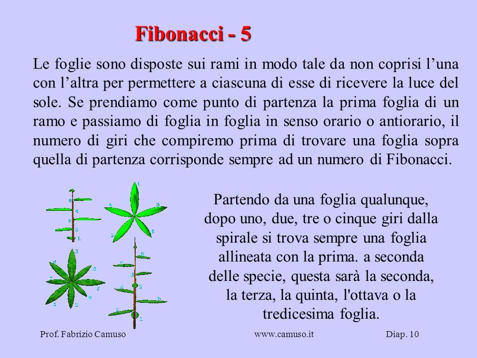 Fibonacci - 5