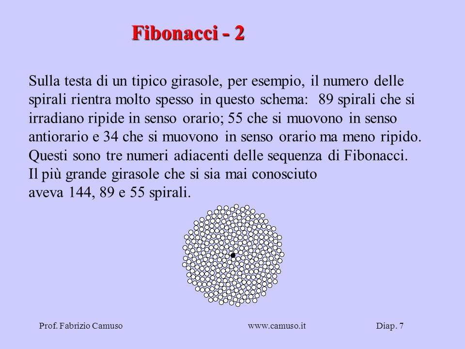 Fibonacci - 2 Sulla testa di un tipico girasole, per esempio, il numero delle. spirali rientra molto spesso in questo schema: 89 spirali che si.