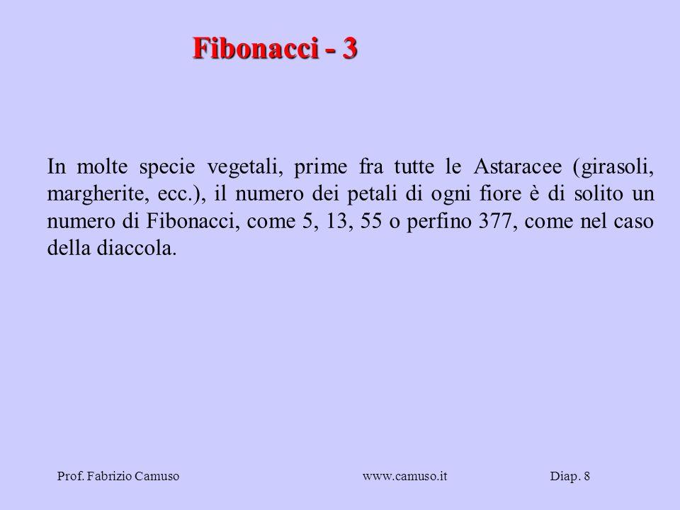 Fibonacci - 3