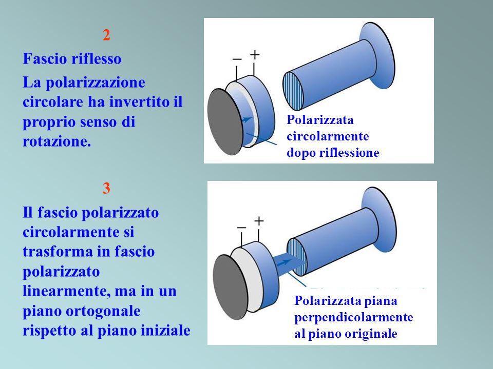 2 Fascio riflesso. La polarizzazione circolare ha invertito il proprio senso di rotazione. 3.