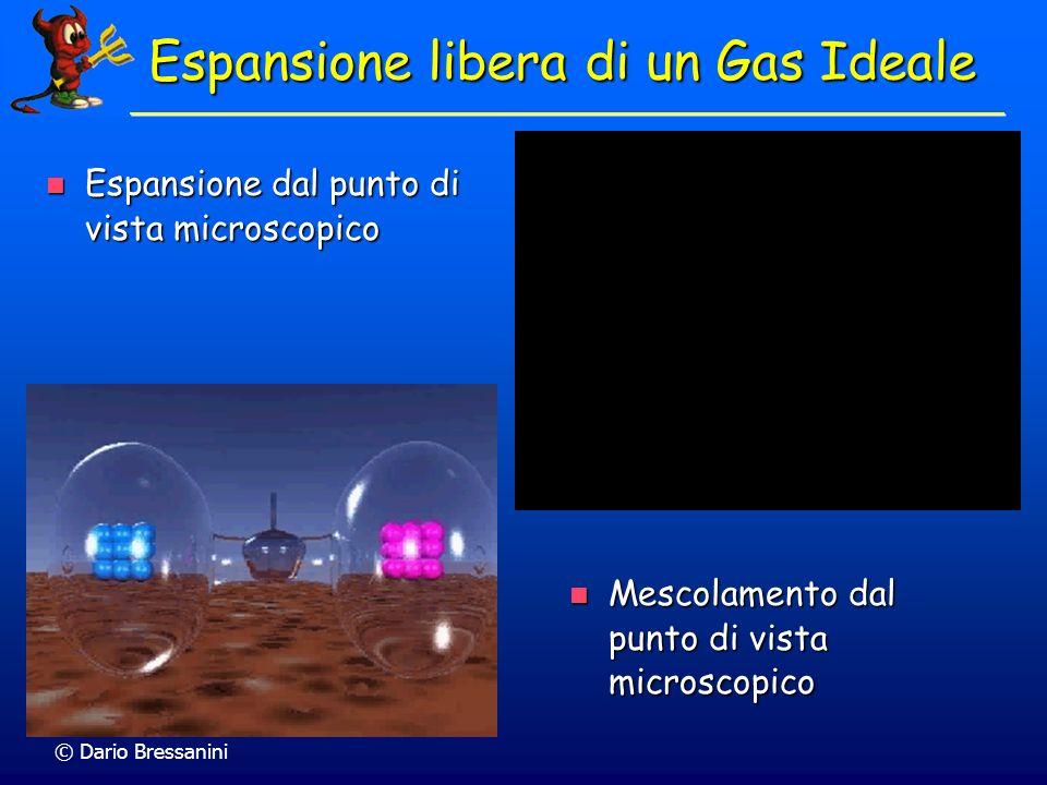 Espansione libera di un Gas Ideale