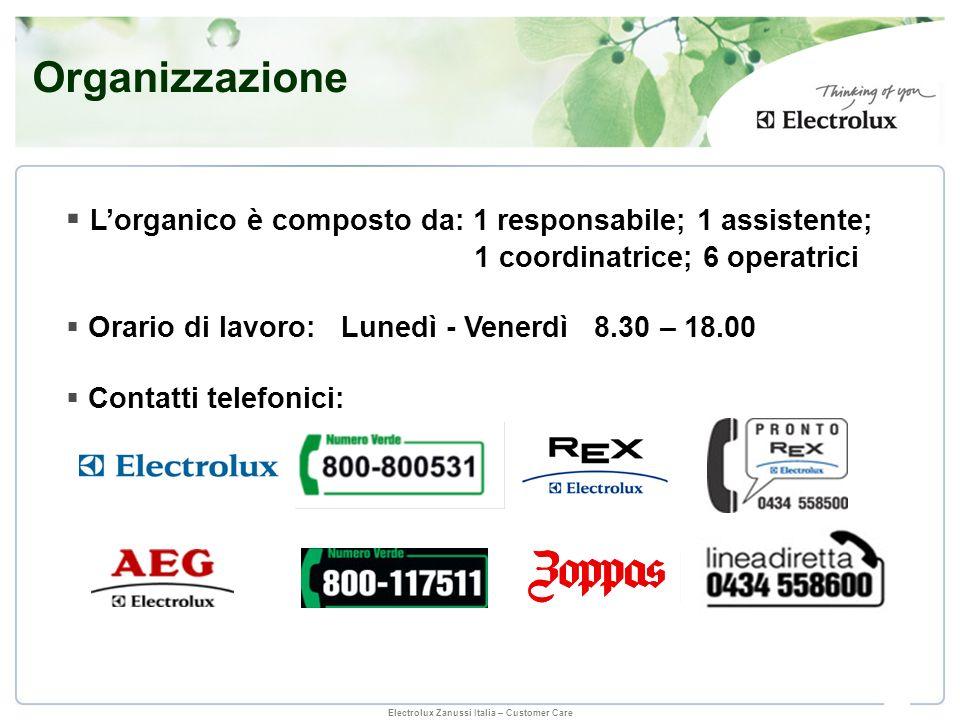 Organizzazione L'organico è composto da: 1 responsabile; 1 assistente;