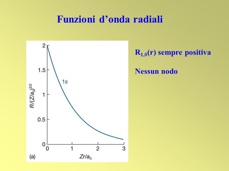 Funzioni d'onda radiali