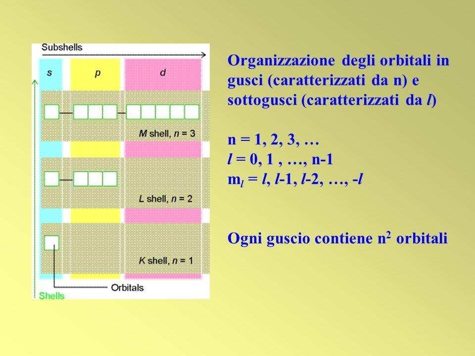Organizzazione degli orbitali in gusci (caratterizzati da n) e sottogusci (caratterizzati da l)