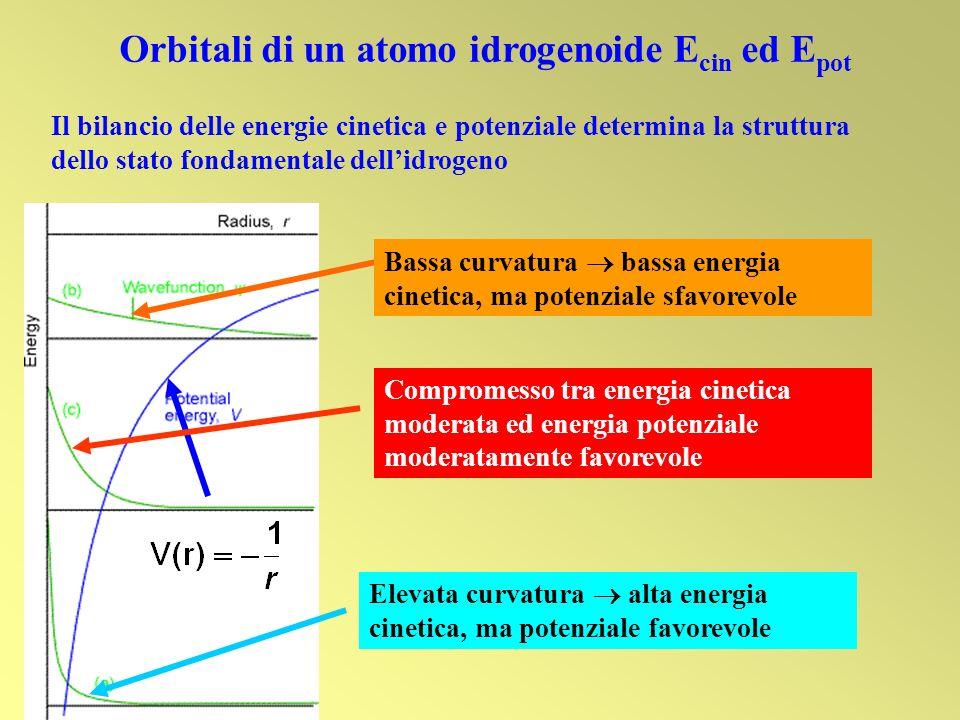 Orbitali di un atomo idrogenoide Ecin ed Epot