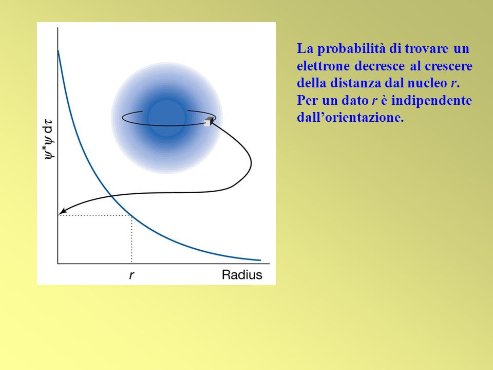 La probabilità di trovare un elettrone decresce al crescere della distanza dal nucleo r.