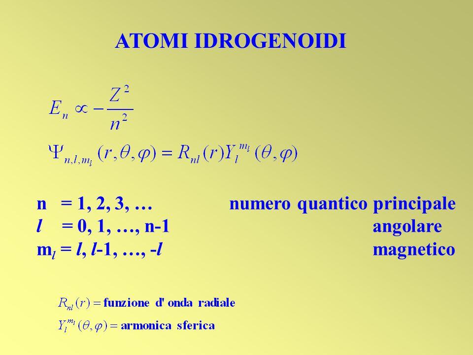 ATOMI IDROGENOIDI n = 1, 2, 3, … numero quantico principale