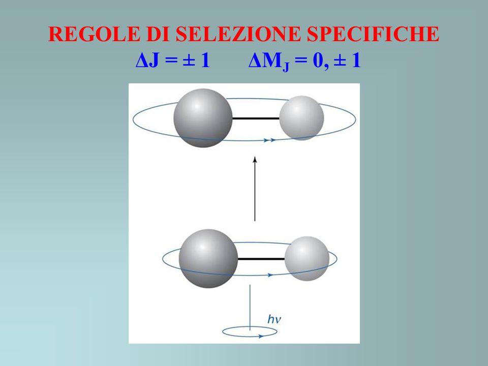 REGOLE DI SELEZIONE SPECIFICHE