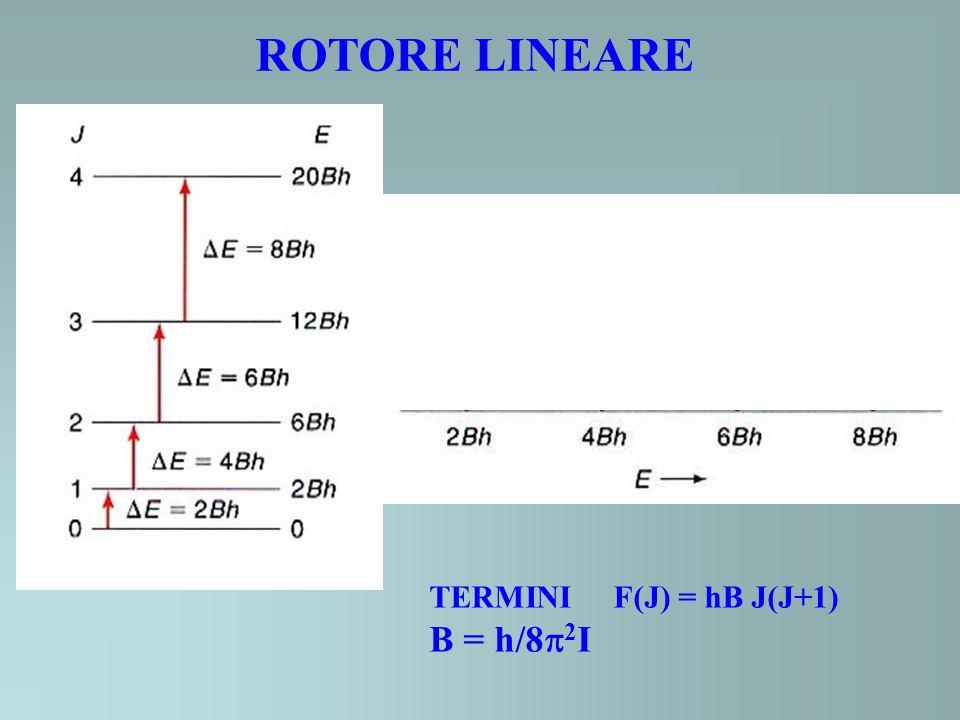 ROTORE LINEARE TERMINI F(J) = hB J(J+1) B = h/82I